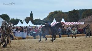 spectacle-équestre-viking-pegaseprod24