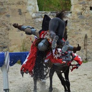 François 1er Le roi chevalier